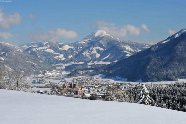 Holiday homeAustria - Tirol: Chalets im Brixental V  [19]