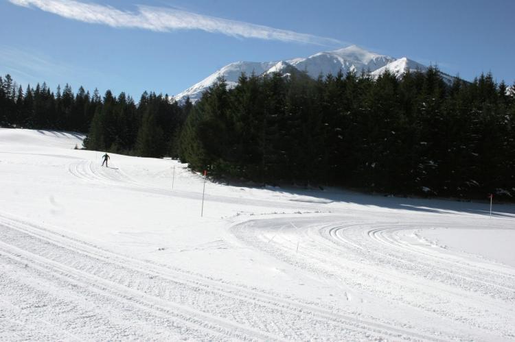 Holiday homeAustria - Styria: Chalet Eresma  [35]