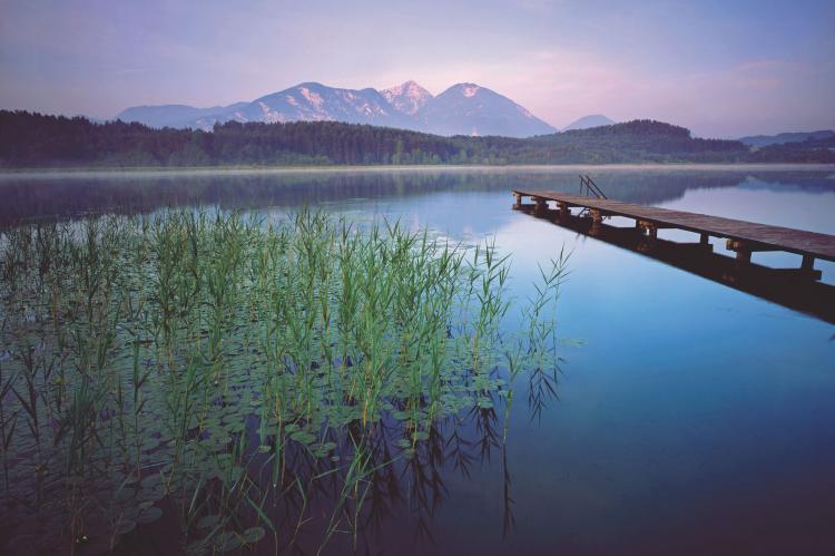 Holiday homeAustria - Carinthia: Ferienwohnung am Drauradweg  [29]