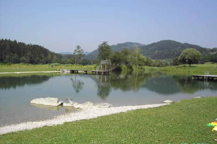 Holiday homeAustria - Carinthia: Ferienwohnung am Drauradweg  [27]