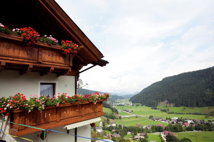 Holiday homeAustria - Salzburg: Mohr  [23]