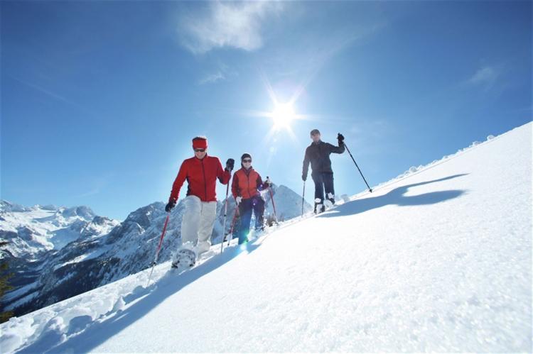 Holiday homeAustria - Upper Austria: Luxery Salzkammergut Chalet C  [24]