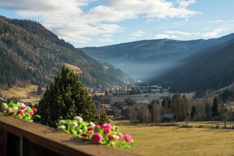 Holiday homeAustria - Salzburg: Edelweiss  [18]