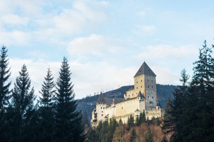 Holiday homeAustria - Salzburg: Edelweiss  [25]
