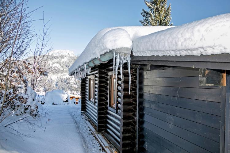 Holiday homeAustria - Tirol: Chalets im Brixental II  [8]