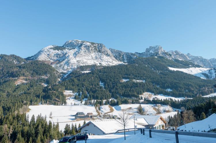 Holiday homeAustria - Salzburg: Dachstein Chalet B  [23]