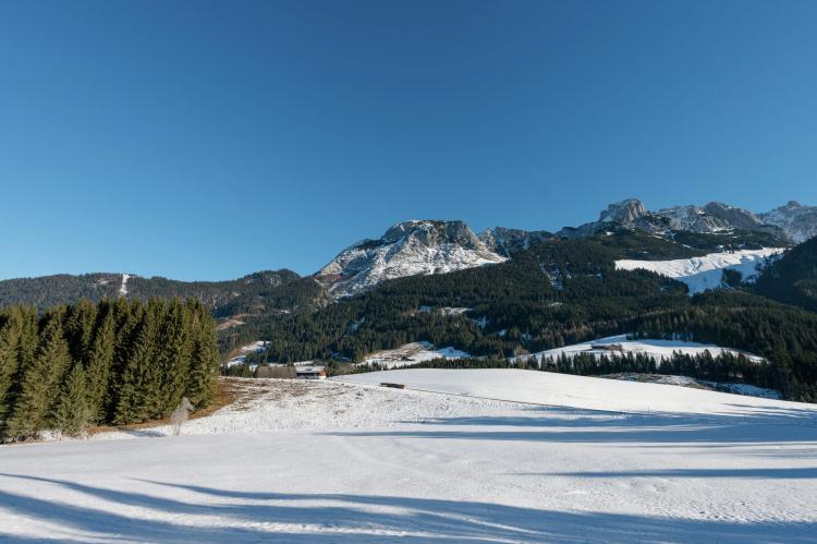 Holiday homeAustria - Salzburg: Dachstein Chalet B  [24]