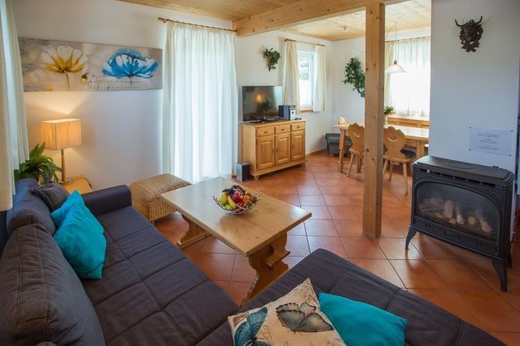 Holiday homeAustria - Salzburg: Dachstein Chalet B  [7]