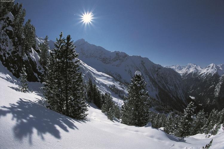 Holiday homeAustria - Tirol: Chalets im Brixental V  [17]