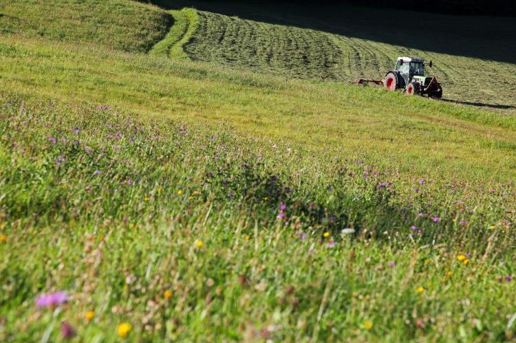 Holiday homeAustria - Tirol: Chalets im Brixental V  [26]