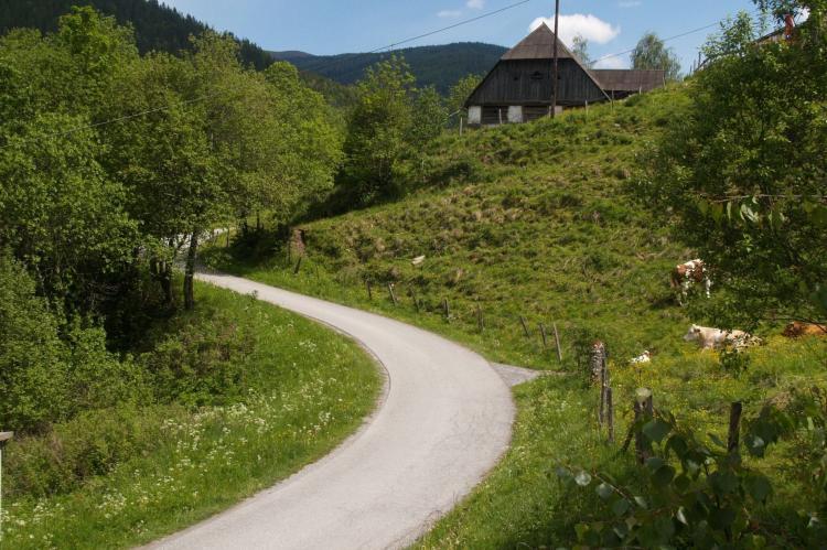 VakantiehuisOostenrijk - Steiermark: De Berghut  [8]