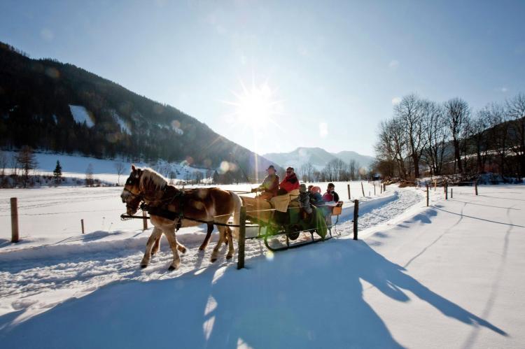 VakantiehuisOostenrijk - Steiermark: Chalet Sonneck  [29]