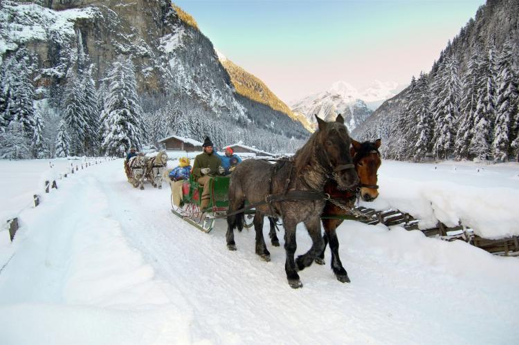 Holiday homeAustria - Salzburg: Gadaunern  [24]
