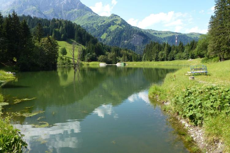 Holiday homeAustria - Carinthia: Dieter  [22]