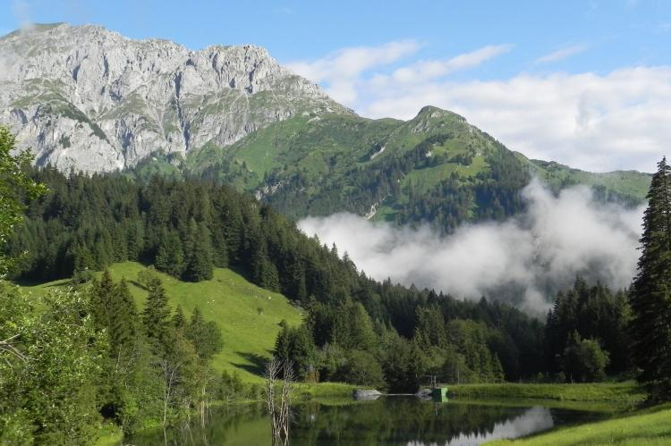 Holiday homeAustria - Carinthia: Dieter  [18]