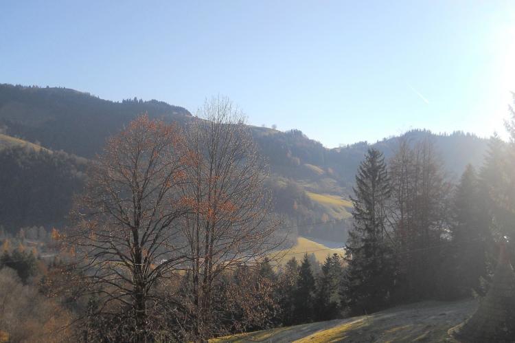 Holiday homeAustria - Tirol: Chalet Niederndorferberg 1  [11]