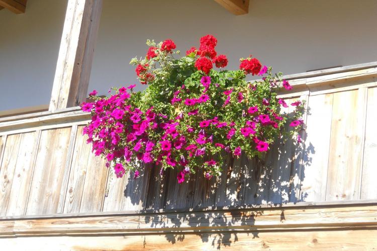 Holiday homeAustria - Tirol: Chalet Niederndorferberg 1  [21]
