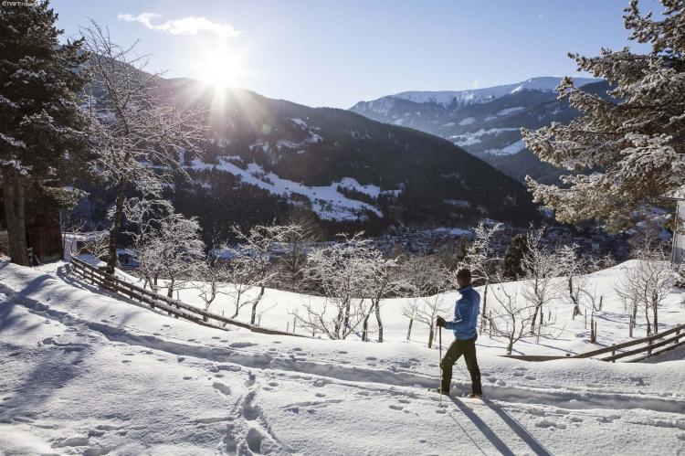 Holiday homeAustria - Tirol: Chalet Niederndorferberg 1  [39]