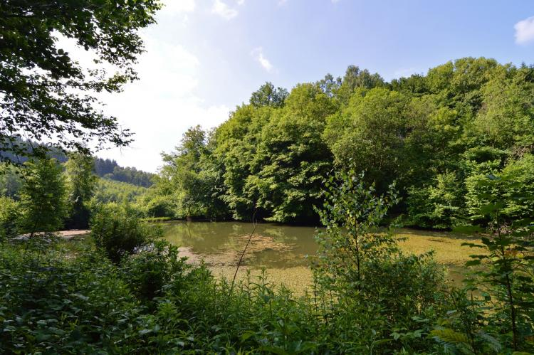 Holiday homeBelgium - Luxembourg: Le Martin Pêcheur  [29]