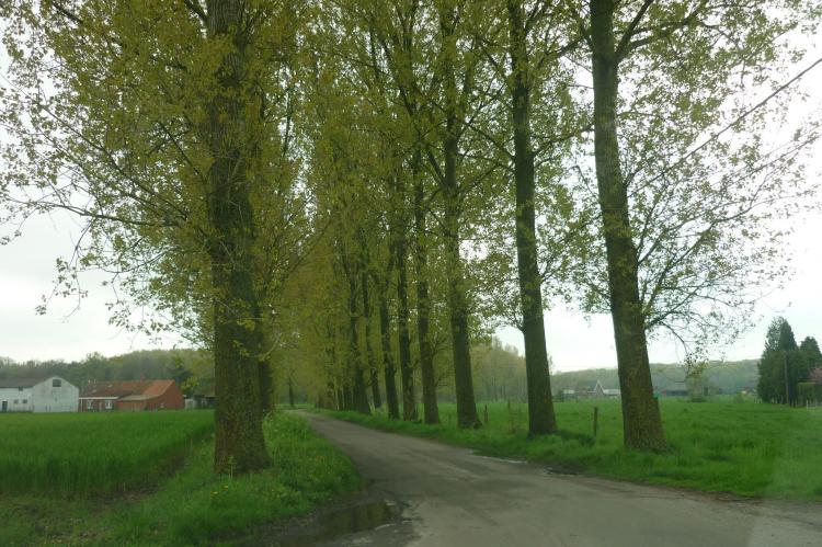 VakantiehuisBelgië - West-Vlaanderen: De Snoeibijl  [30]