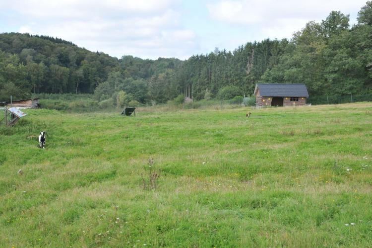 VakantiehuisBelgië - Ardennen, Namen: Le Bochetay 1  [28]