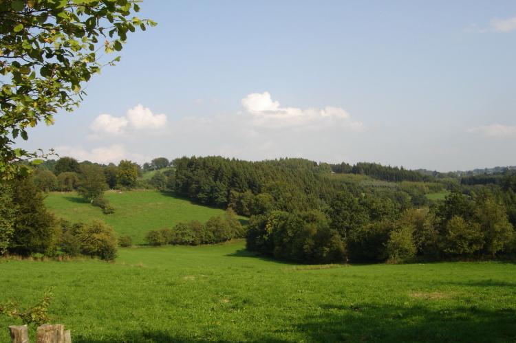 FerienhausBelgien - Ardennen, Lüttich: Les Bouleaux  [8]