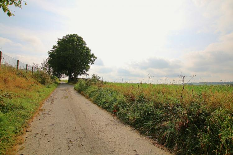 VakantiehuisBelgië - Ardennen, Luxemburg: La Petite Reine  [32]