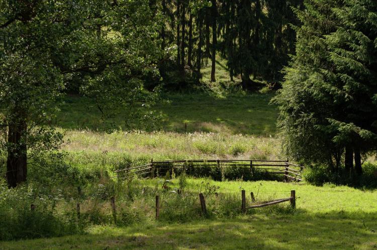 VakantiehuisBelgië - Ardennen, Luxemburg: Cetturu  [19]