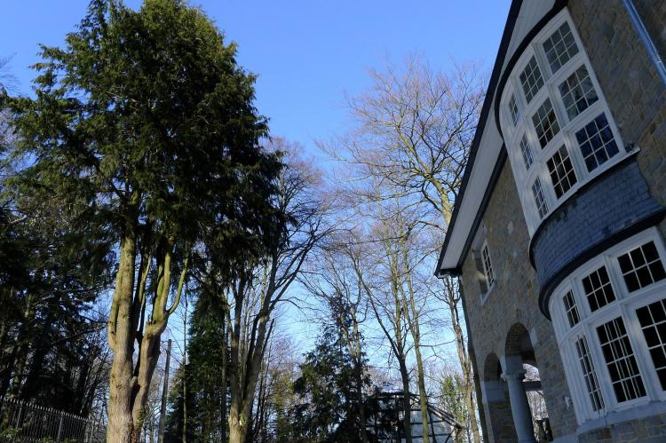 VakantiehuisBelgië - Ardennen, Luik: Le Soyeureux  [8]