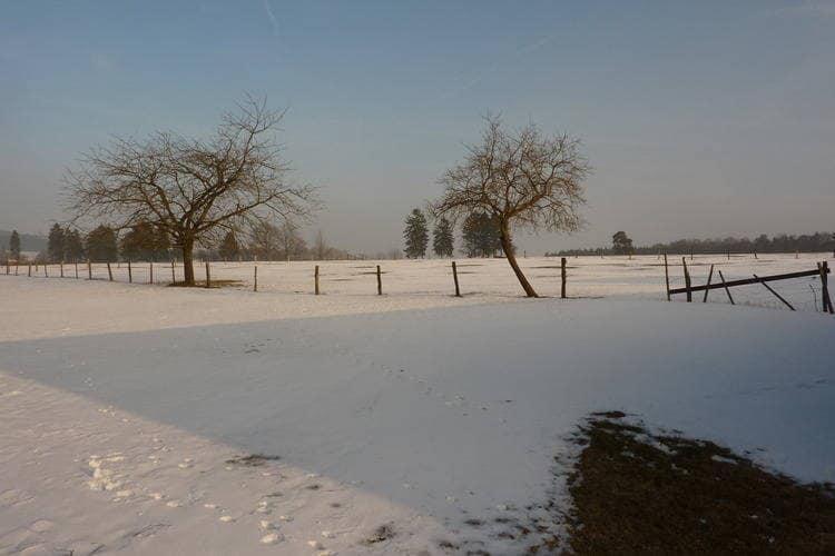 Holiday homeBelgium - Luik: Les Pâturages 2  [20]
