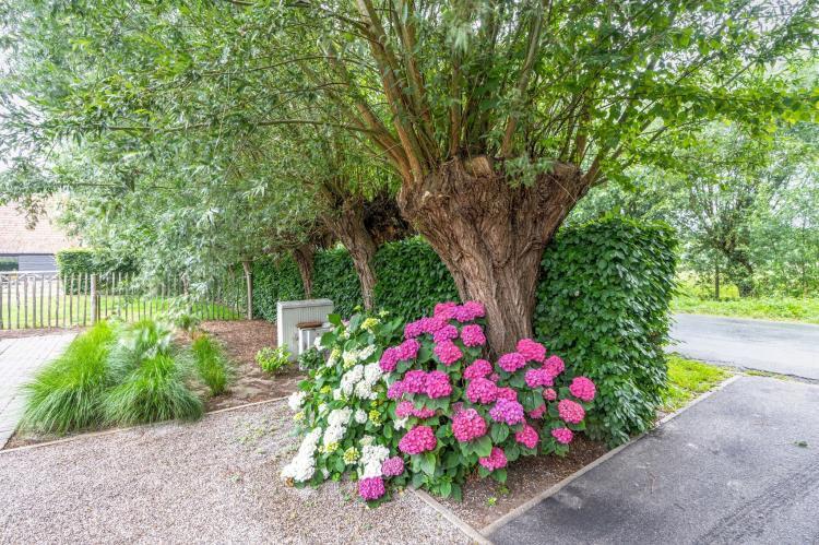 Holiday homeBelgium - : De Swaenhoeck  [38]