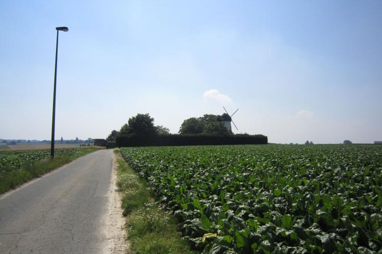 VakantiehuisBelgië - Oost-Vlaanderen: De Reus van Horebeke  [27]