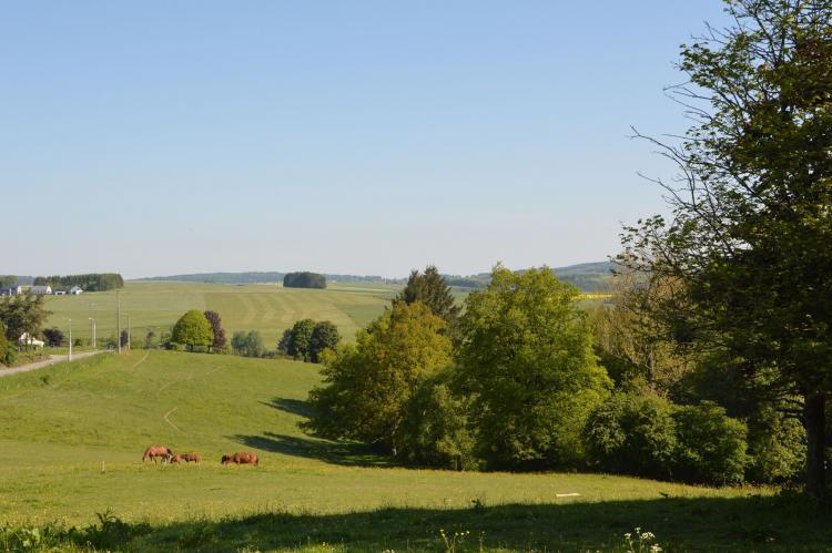 VakantiehuisBelgië - Ardennen, Luxemburg: Bourcy  [34]