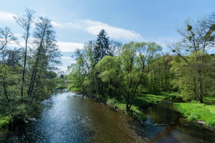Holiday homeBelgium - Luxembourg: La Reposée  [33]
