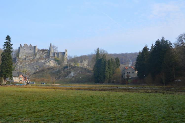 Holiday homeBelgium - Namur: Vue sur le Chateau de Montaigle  [5]