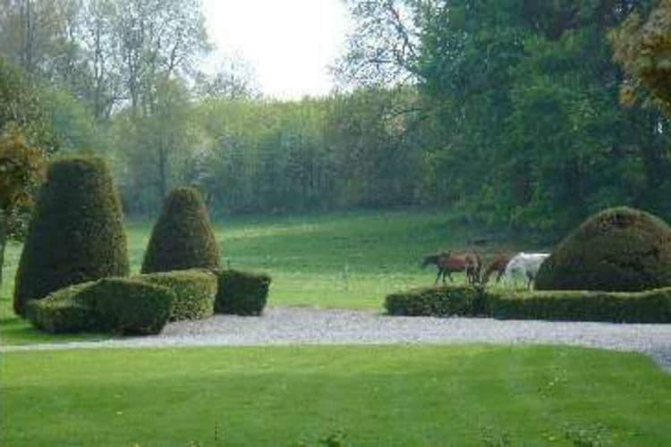 VakantiehuisBelgië - Ardennen, Namen: Le Clos du Château  [31]