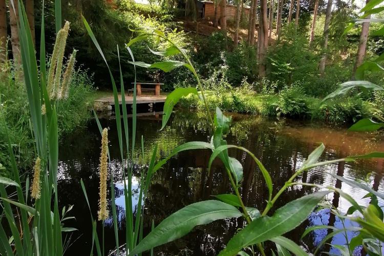 Holiday homeBelgium - Luxembourg: La Canne à Pêche  [51]