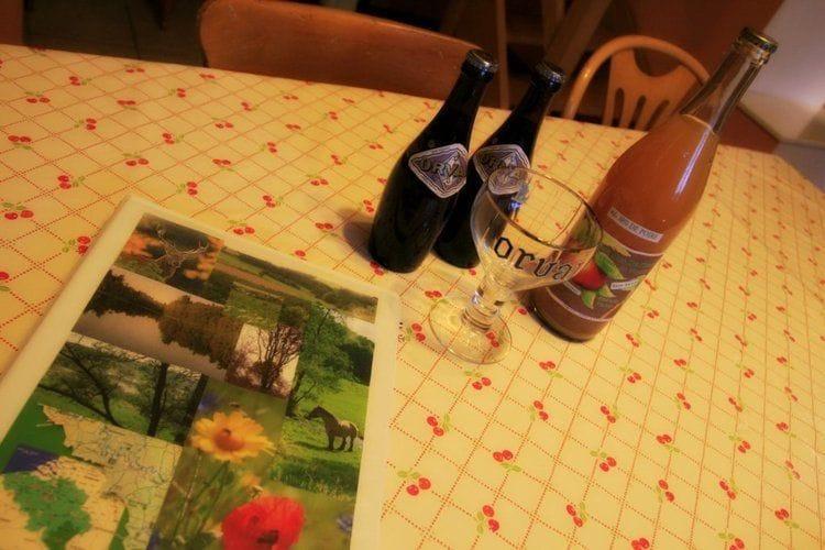 Holiday homeBelgium - Luxembourg: Le Versant  [40]