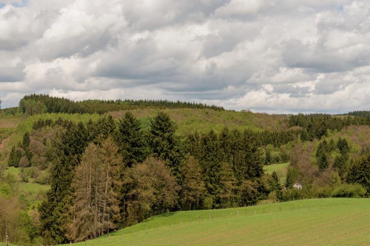 VakantiehuisBelgië - Ardennen, Luxemburg: Le Hameau du Château  [34]