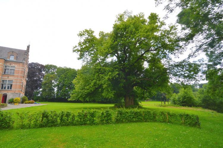 VakantiehuisBelgië - Ardennen, Namen: Le Vieux Tilleul du Château  [21]
