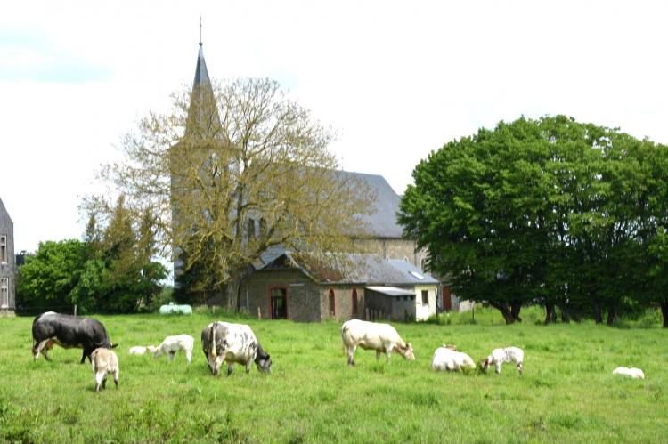 VakantiehuisBelgië - Ardennen, Luxemburg: Coeur de Boeur  [36]