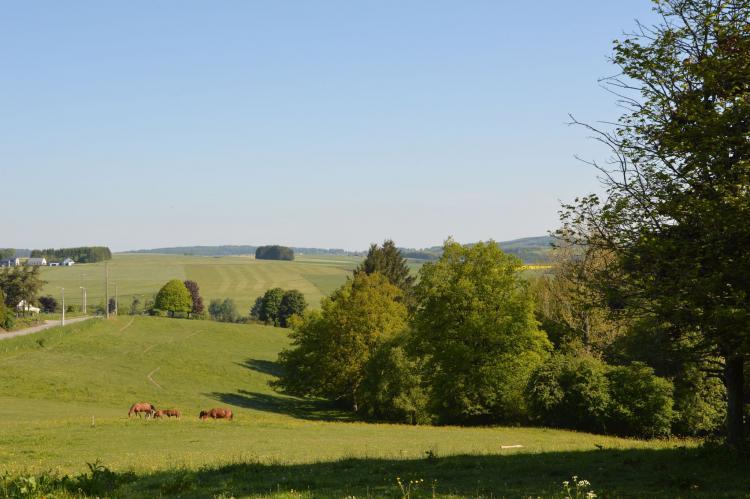 VakantiehuisBelgië - Ardennen, Luxemburg: Villa Saint Amour  [20]