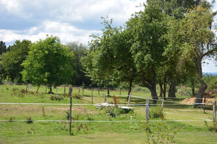 Holiday homeBelgium - Namur: Sous le Charme d'Epona  [31]
