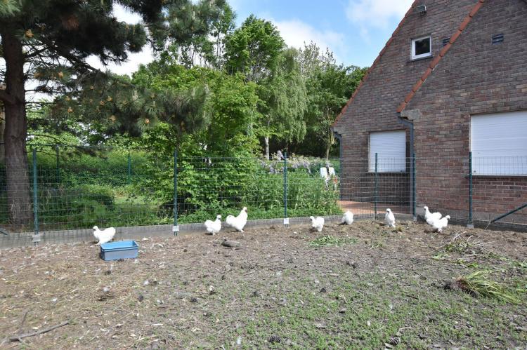 Holiday homeBelgium - West Flanders: Valkenhorst  [31]