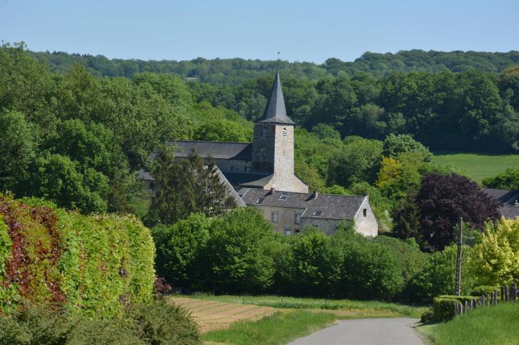 VakantiehuisBelgië - Ardennen, Luxemburg: Le vieil érable  [29]