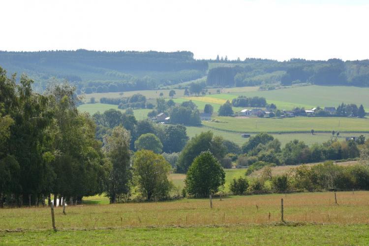VakantiehuisBelgië - Ardennen, Luxemburg: Le vieil érable  [25]