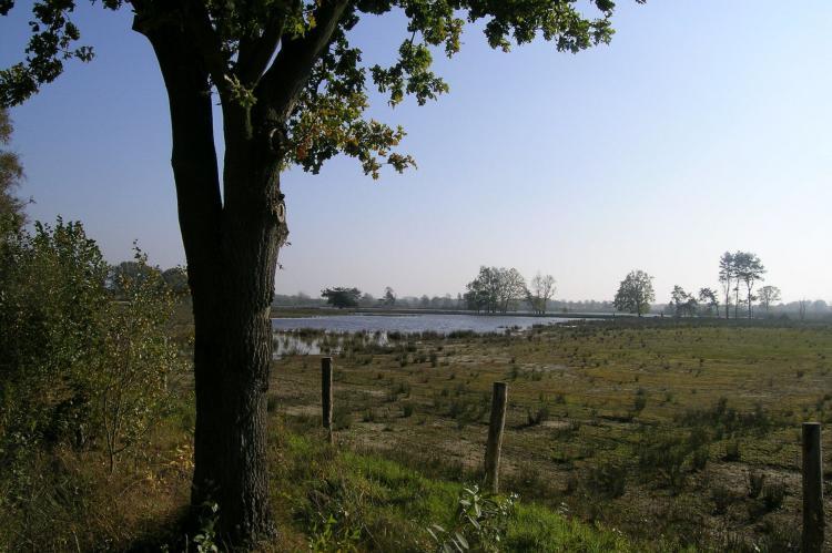 VakantiehuisBelgië - Antwerpen: Baalse Hei 3  [26]