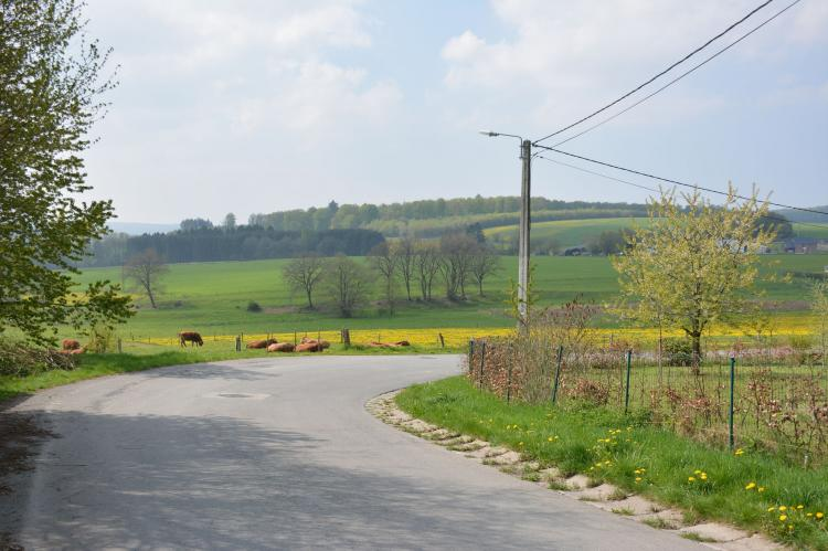 VakantiehuisBelgië - Ardennen, Luxemburg: Au Coeur de Champlon  [7]