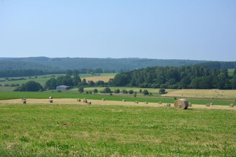 VakantiehuisBelgië - Ardennen, Luxemburg: La Grange  [17]