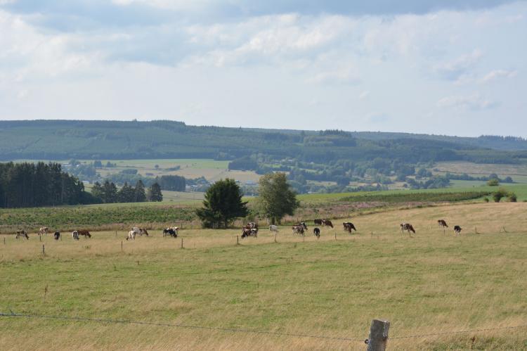 VakantiehuisBelgië - Ardennen, Luxemburg: Le Barrage  [34]